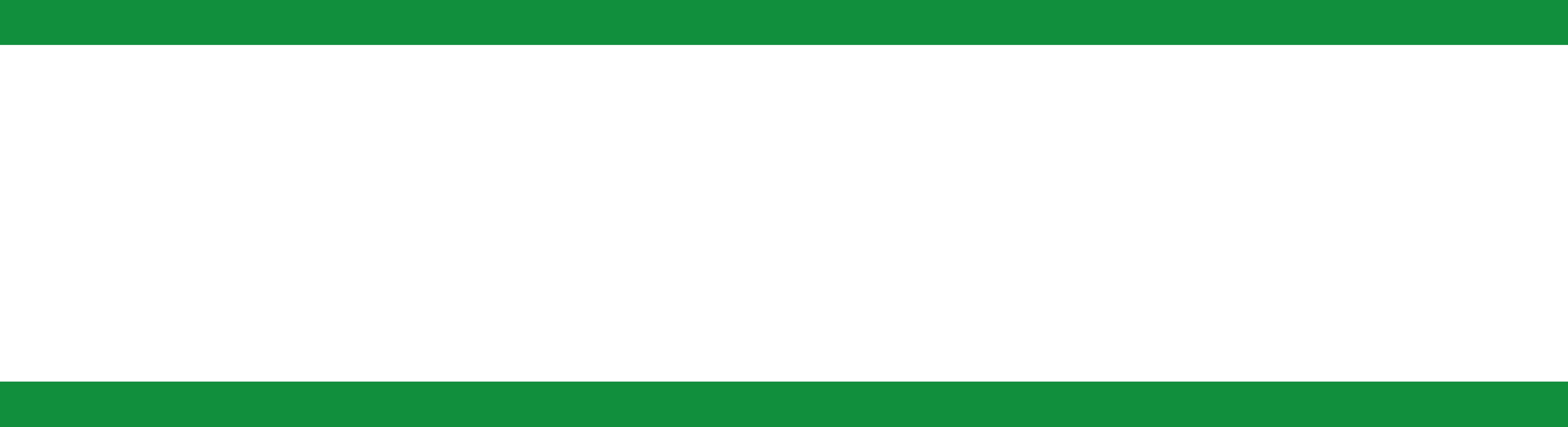Naikoon_logo_web_white