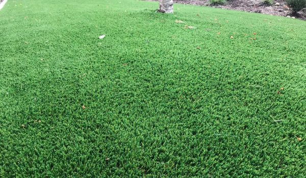 synthetic_grass1_rondoval