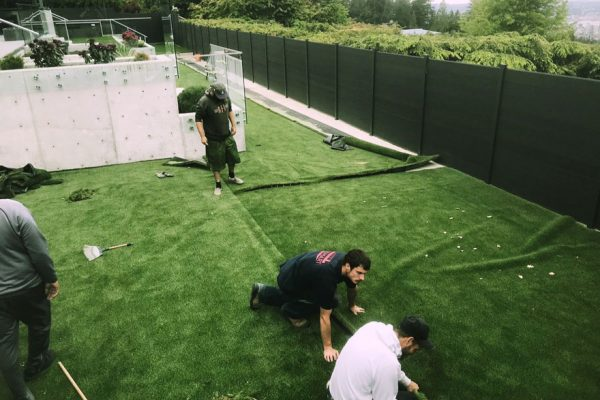 synthetic_grass3